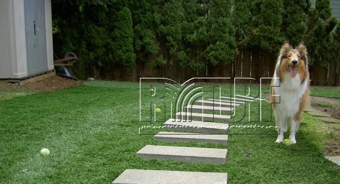 Backyard artificial turf landscape
